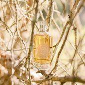 Vôňa Shades of Wood 🤎 s cédrovým esenciálnym olejom z Maroka. Pocta vzácnemu marockému cédru, symbolu tajomstva, bohatstva a tepla Orientu, vo výrazne drevitej vôni.  #durance #madeinfrance #cosmetics #perfume #beautycare