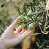Vďaka vôni olív sa dostanete do srdca Provensálska 💚.  #france #provence #durance #madeinfrance #natural #cosmetics